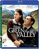 #9: How Green was My Valley