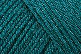 Caron einfach soft Acryl Aran Strickgarn Wolle Garn 170g -0014Pagode