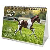 Fohlenzauber 2020 Calendrier de table Format A5 Motif chevaux et poules