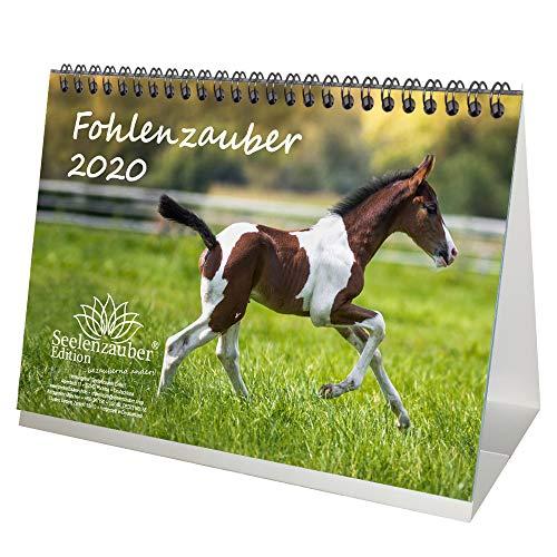 Fohlenzauber DIN A5 Tischkalender 2020 Pferde und Fohlen Geschenk-Set: Zusätzlich 1 Gruß- und 1 Weihnachtskarte - Seelenzauber