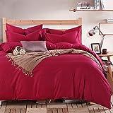 HBY estilo rico floral 4 Piezas Flocado Juego de cama completo, 1 funda nórdica, 1 cenefa, 72 funda de almohada