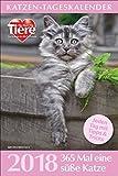 Katzen-Tageskalender 2018