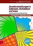 Jenseitsvorstellungen in Judentum, Christentum und Islam: Unterrichtsbausteine für berufsbildende Schulen (RU praktisch - Berufliche Schulen) - Monika Marose