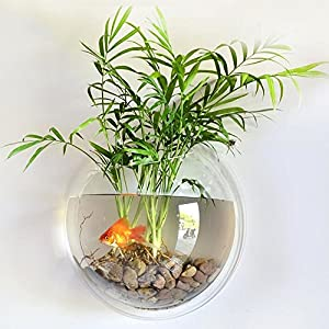 Transparent DAYOLY Wall Hanging Fish Tank Gold Fish and Beta Fish Plant Vase Home Decoration Pot Acrylic Round Wall Mounted Hanging Fish Bowl Aquarium Tank 23CM