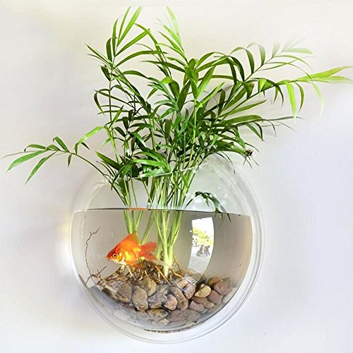 La pared redonda de acrílico transparente montó el tanque colgante del acuario del tazón de fuente de pescados para los pescados del oro y la planta de pescados beta florero casero de la decoración, diámetro 15 cm