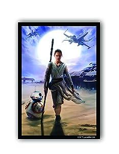 Fantasy Flight Games FFGSWS25 Rey Art - Funda para Pantalla: Star Wars The Force Awakens, Multicolor