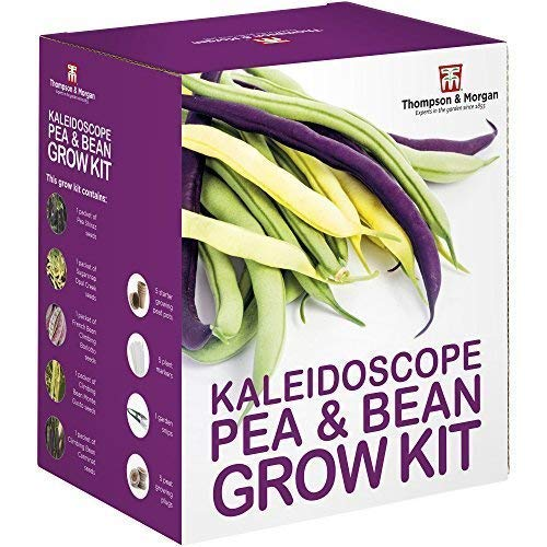 Thompson & Morgan Grow Kits Cadeau Boîtes - Kaléidoscope Pois & Haricot
