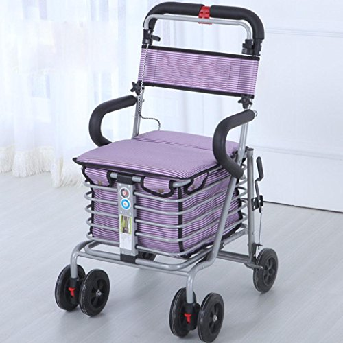 Fuß Schritt Einkaufen Wagen Eisen Falten größten für Nahrung Freizeit kann drücken Auto kaufen Walker Reisen gray embroidery (Eisen Fuß)