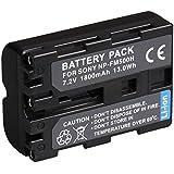 BPS Batterie de rechange SONY NP-FM500H pour appareil photo reflex Sony Alpha A200 A300 A350 A450 A500 A550 A560 A580 A700 A900 etc