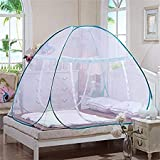 Cratos Double Bed Foldable White Mosquito Net -King Size Bed, Queen Size Bed (Pink/Blue/Green Border)