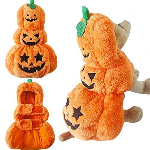 JiaYue Arctic Velvet Haustierbekleidung Cute Draping Kürbis Pattern Halloween Hund Kleidung , Orange , (Nobbies Halloween Kostüme)
