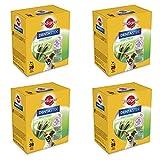 Pedigree Dentastix Fresh 112 Snack per la Igiene Orale (Cane Piccolo 5-10 kg) 440 g 28 Pezzi - 4 Confezioni da 28 Pezzi (112 Pezzi totali)
