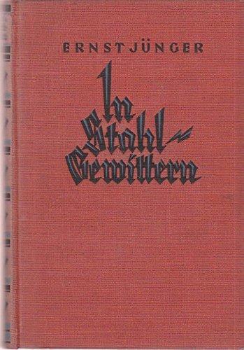 In Stahlgewittern - Aus dem Tagebuch eines Stoßtruppführers