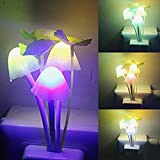 Inditradition Nursery Plant Night Plug Light | With Smart Sensor Auto On-Off | 0.2 W, Automatic Color Changing