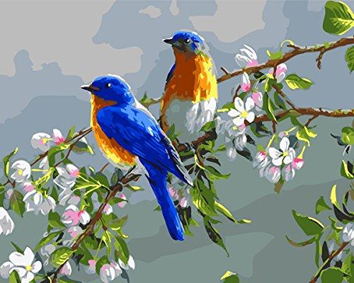 iplst-senza-cornice-pittura-ad-olio-di-fai-da-te-da-spazzole-vernice-dai-kit-di-numeri-due-uccelli-i