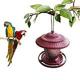 PoeticHouse PoeticHouse Automatische Vogelhäuschen, Wilde wasserdichte Hängende Feeder-Balkon-Mini-Vogelhaus Fun