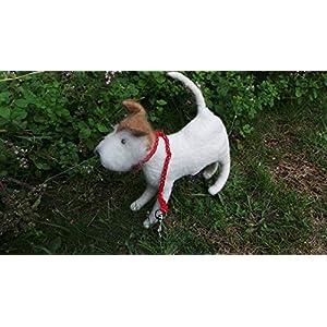 Hundetüten- Kotbeutelspender aus Filz, Foxterrier, Tasche für Kotbeutel, Hundefigur, Gassibeutel, Stoff Hund,