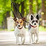 Tacobear Dog Leash Coupler No Tangle Double Dog Dual Reflective Adjustable Splitter Lead Walker Trainer Leash for Two… 12