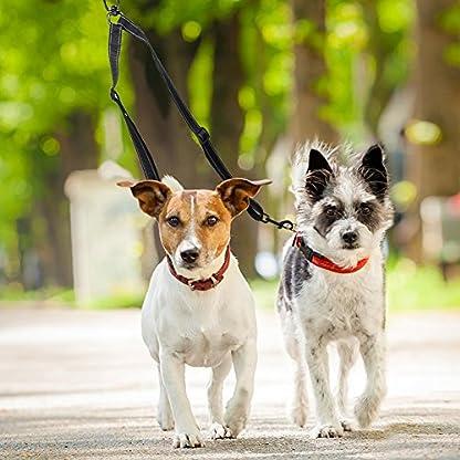 Tacobear Dog Leash Coupler No Tangle Double Dog Dual Reflective Adjustable Splitter Lead Walker Trainer Leash for Two… 6