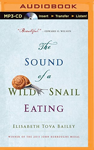 The Sound of a Wild Snail Eating