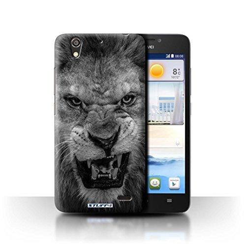 Stuff4® Hülle/Hülle für Huawei Ascend G630 / Löwe Muster/Zoo-Tiere Kollektion