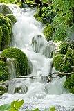 empireposter - Wasserfall Feng Shui - Holzplattenbild aus MDF - Größe (cm), ca. 60x90 - Holzplattenbild, NEU - Beschreibung: - Natur Holzbild auf MDF-Platte (Holzfasermaterial) Foto Wasserfälle -
