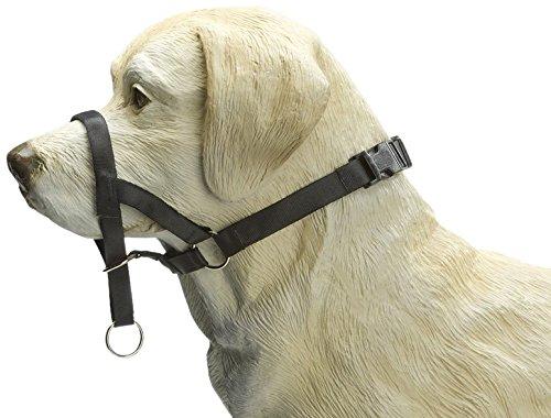"Beeztees 765391 Hundehalfter ""Dog Control"", Größe M-Special (7), 34 cm, schwarz"