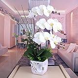 DSAAA Fake Blume Home Dekoration Gestecke künstliche Blume Phalaenopsis Orchidee Topfpflanzen kreative lebende Weiße