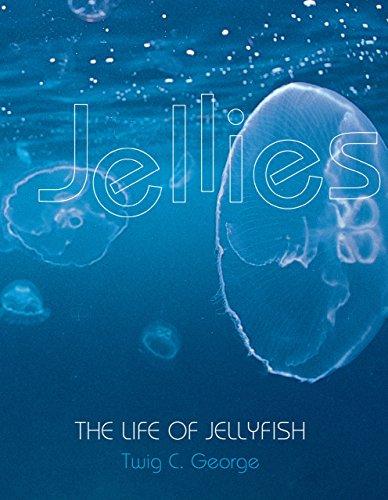 Jellies -