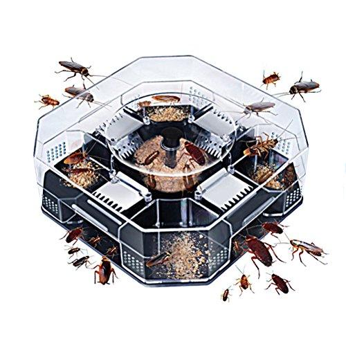 Raid Ant-roach Killer (BESTONZON 3 PCS wiederverwendbare Schabenfallen No Pollution Roach Busters Schabenfänger - Lagre)