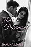 Book cover image for The Promise: Book One