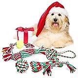 Pecute Giocattoli della Corda per Cani 6 Pezzi per Divertimento e Addestramento Giochi per Pulire Denti Adatti per Cani Piccoli e Medi
