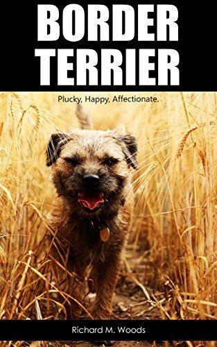 border-terrier-english-edition