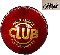 PSE Priya Sports Red Pure Leather Cricket Ball