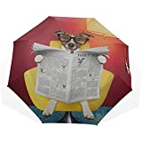 Big Rain Umbrella Perro Leyendo Periódico o Revista 3 Fold Art Umbrellas Sun Umbrella Best Sun Protection Umbrella Sun Umbrella