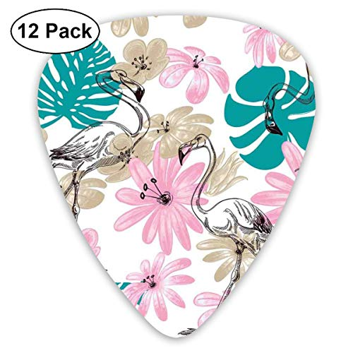 Celluloid Guitar Picks - 12 Pack,Abstract Art Colorful Designs,Flamingo And Flowers Exotic Garden Birds Animal Blooms Leaves Pattern Artwork,For Bass Electric & Acoustic Guitars. Womens Urban Garden