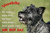 +++ CAIRN Terrier - Metall WARNSCHILD Schild Hundeschild Sign - CRT 08 T2