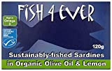 Dairy Free Olive Oil