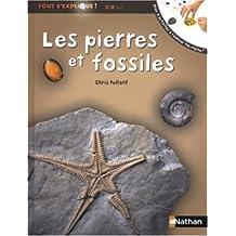 Pierres et fossiles