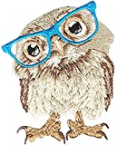 "C&D Visionary Patch - Owl 2.5""X3.25"" (Pack of 3 )"