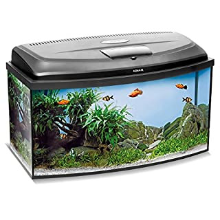 Aquael Aquarium Set Classic LT inkl. Abdeckung, Filter, Heizer, LED Beleuchtung (60x30x30 gewölbt)