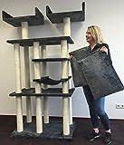 Kratzbaum Cat Palace Elite Anthrazit. Normal €339 ! Super Amazon Promo Katenkratzbaum Speziell für große und schwere Katzen. Europäischer Qualitätsproduktion von RHRQuality