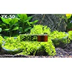 RICISUNG 1pcs Digital LCD Fish Aquarium Marine Vivarium Thermometer -50¡ãC to 70 ¡ãC 5