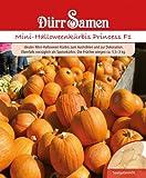 Kürbissamen - Mini-Halloween-Kürbis Harvest Princess F1 von Dürr-Samen [MHD 12/2017]