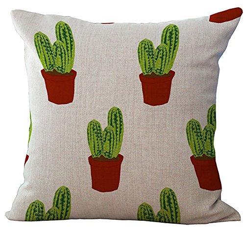 Red Square Pot (Gary S.Shop Green Cereus-Red Pot Home Decor Pillow Case 18 x 18 Inch)