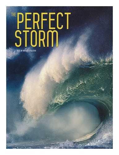 The Perfect Storm / Valeria Mnferto de Dabianis [project editor] ; Ornella D'Alessio [text]
