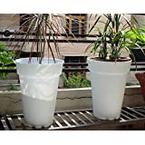 [Sponsored]Wonderland (pack Of 2) 38.8 Cms Tall Pots, Planter, Planters In White To Grow Real Plants, Hole Below, Garden Pots And Planters, Balcony Planters, Garden Decor, Home Decoration Made Of PP / PVC / Very High Grade Plastic