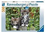 Ravensburger - 14147 - Puzzle Classique - Chatons à L'Affut - 500 Pièces