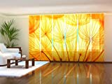 Wellmira Fotogardine, Flächenvorhang, Fotodruck, Schiebevorhang, Bedruckte Schiebegardinen, Gardine mit Motiv, auf Maß (6 x 245x60)