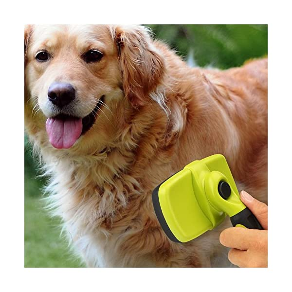Pecute Slicker Dog Brushes,Self Cleaning Pet Grooming Brush- Removes 90% of Dead Undercoat and Loose Hairs,Suitable for Medium and Long Haired Dogs Cats 7